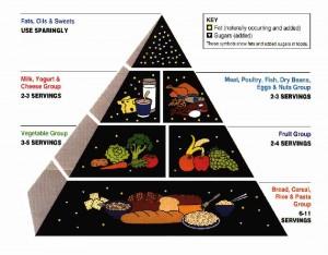 food-guide-pyramid