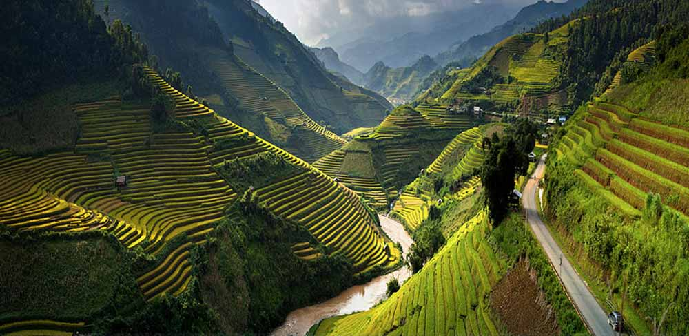 rice-terrace-fields-vietnam-1