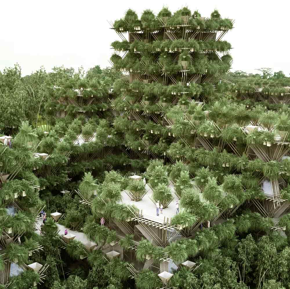bamboo-house-10