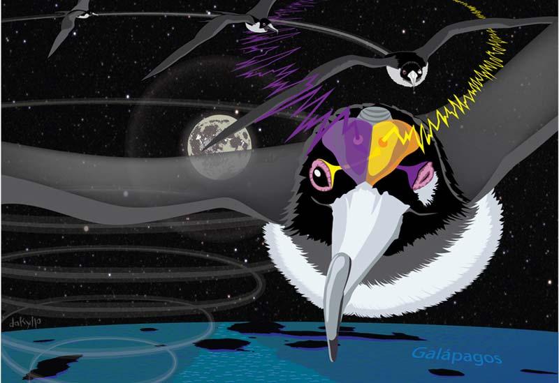 flying-bird-sleep-2