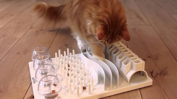 cat-food-puzzle-1
