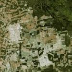 ผืนป่าธรรมชาติบนโลกสูญหายไปถึง 10% เพียงแค่ช่วงสองทศวรรษเท่านั้น