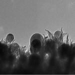 นักวิจัยค้นพบวิธีเปลี่ยนก๊าซคาร์บอนไดออกไซด์ให้เป็นเอทานอลได้โดยบังเอิญ