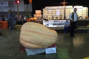 pumpkinfest-2016-3