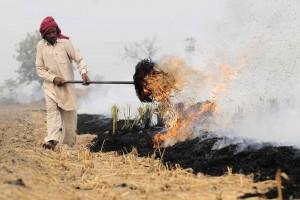 new-delhi-air-pollution-5