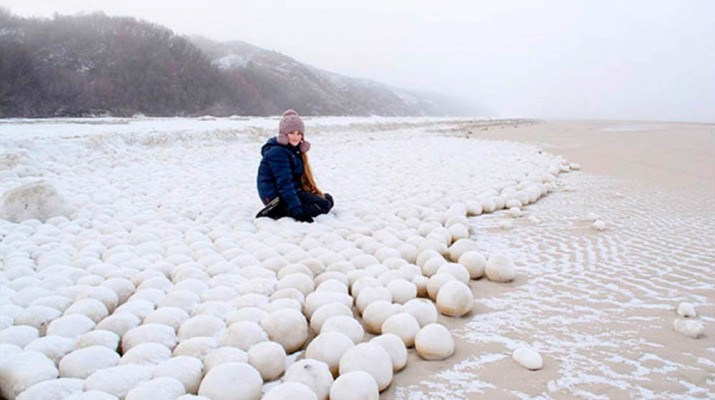 siberian-beach-snowballs-1