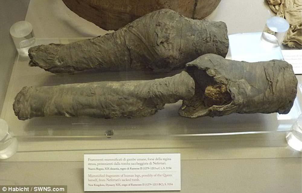 mystery-mummified-legs-2
