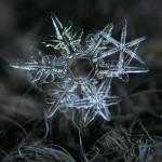 เกล็ดหิมะ…สิ่งมหัศจรรย์ที่ธรรมชาติสร้างขึ้นอย่างงดงามหลากหลายไม่ซ้ำแบบ