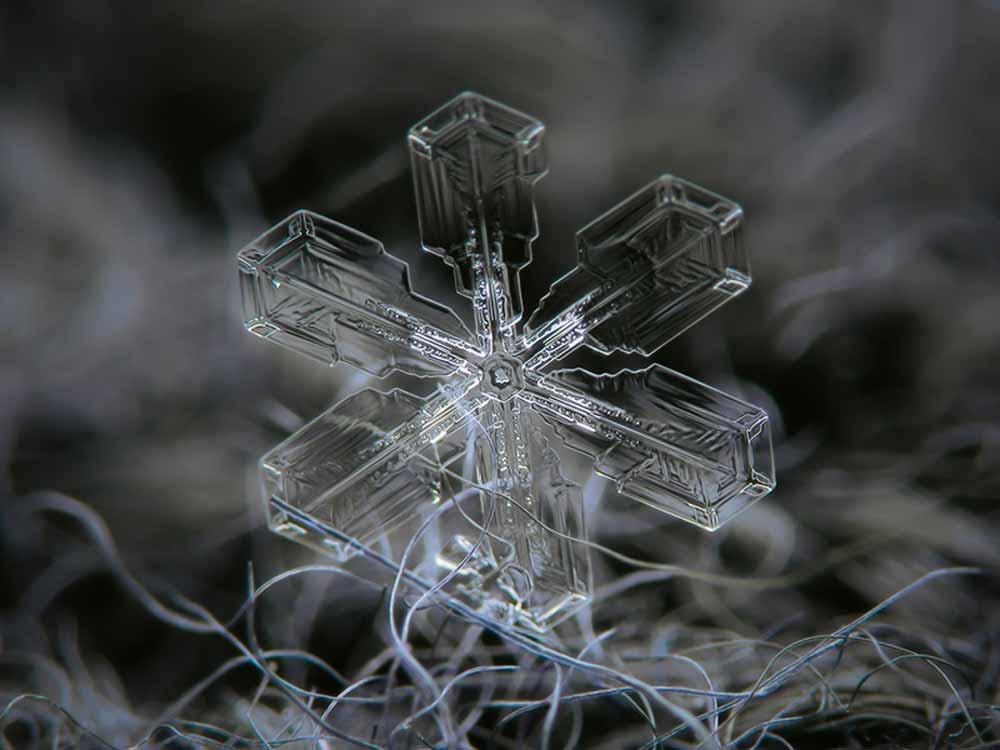 snowflake-04