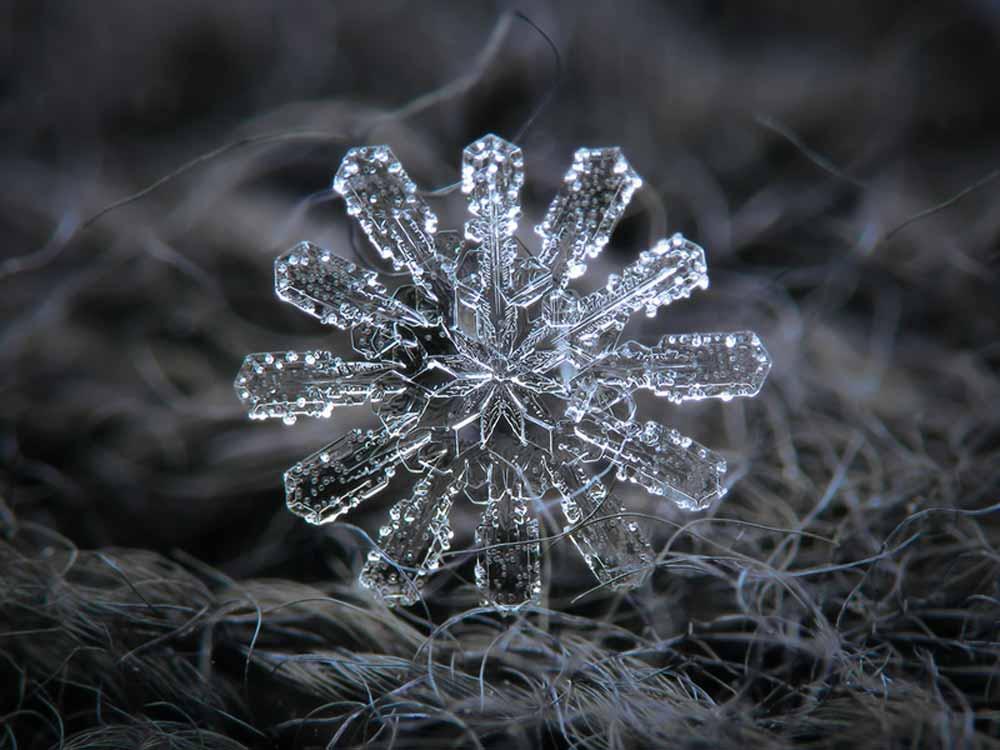snowflake-05