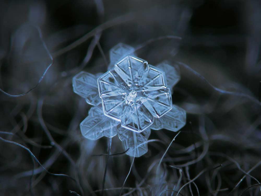 snowflake-06