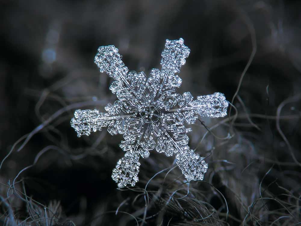 snowflake-08