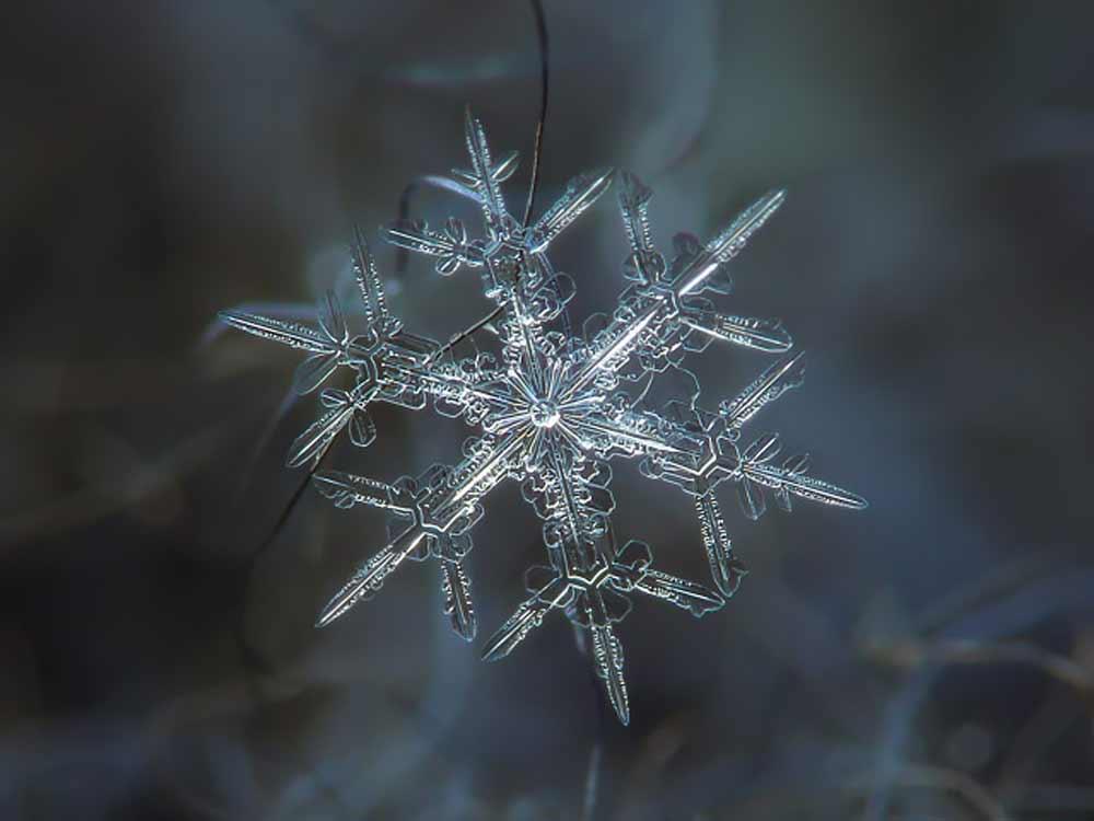 snowflake-09