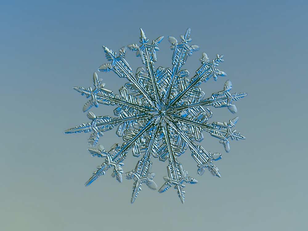snowflake-12