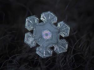 snowflake-18