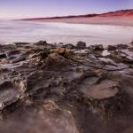 พบรอยเท้าไดโนเสาร์นับพันชุมนุมกันเหมือนเป็น 'จูราสสิคพาร์ค' ที่ออสเตรเลีย