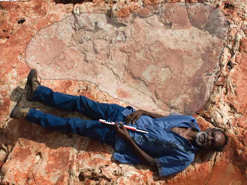 dinosaur-footprint-australia-2