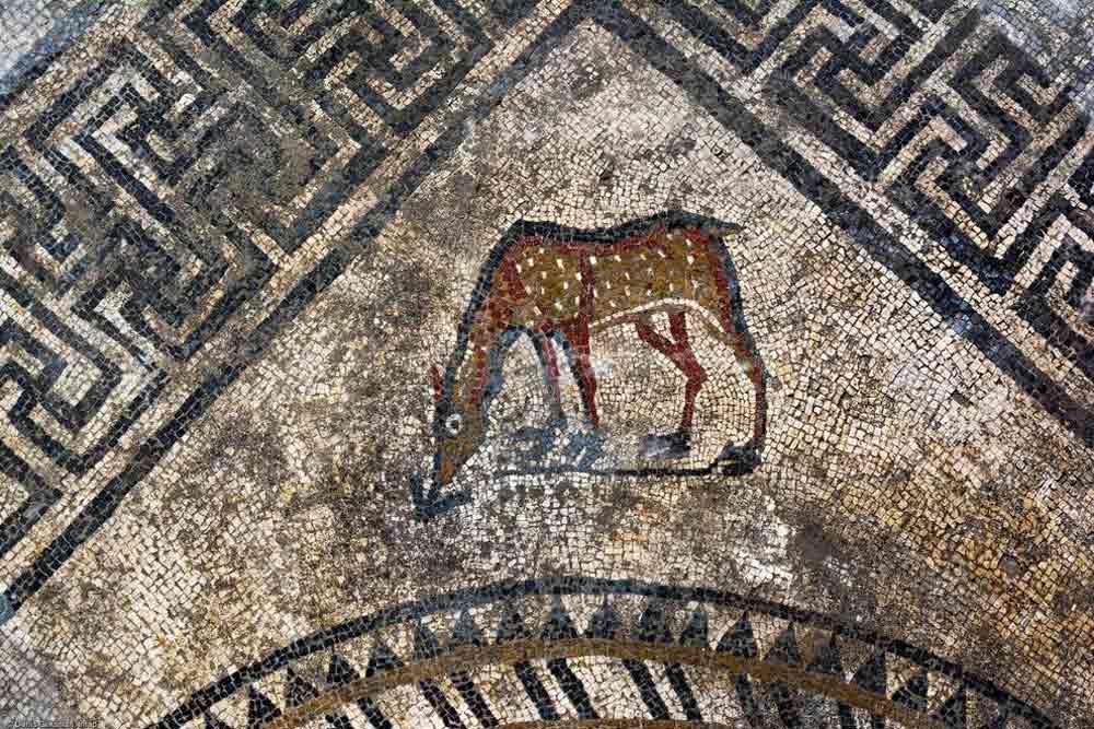 mosaic-roman-city-france-5