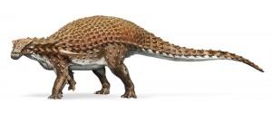 nodosaur-fossil-canada-2
