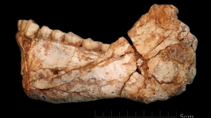 oldest-homo-sapiens-fossil-1