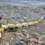 นักวิจัยสร้างปลาไหลหุ่นยนต์ใช้สำหรับตรวจหามลพิษในน้ำ