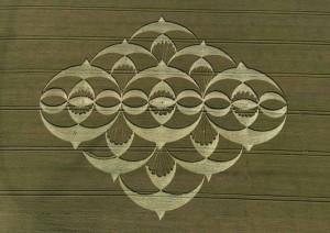 crop-circles-15