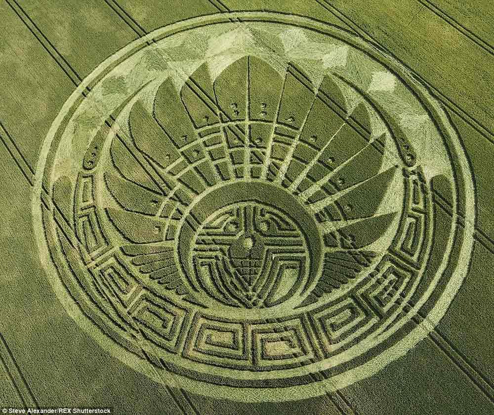 crop-circles-17