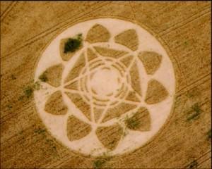 crop-circles-8