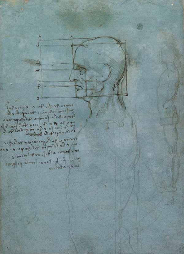 da-vinci-anatomy-1