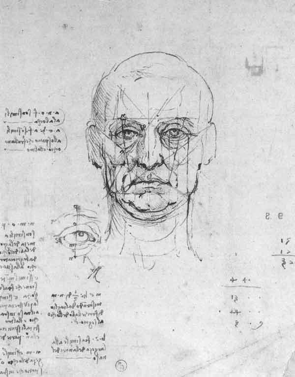 da-vinci-anatomy-2