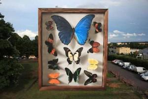 butterfly-murals-mantra-5