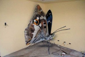 butterfly-murals-mantra-9