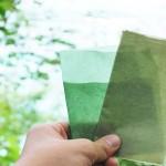 เลิกใช้พลาสติกขยะ! บรรจุภัณฑ์กินได้และย่อยสลายได้เอง 100% มาแล้ว