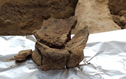 ขุดพบไหใส่ไวน์เก่าแก่ที่สุดในโลกจากยุคหินอายุ 8,000 ปีในประเทศจอร์เจีย