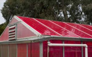 solar-greenhouse-1