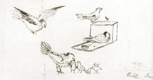 Pablo-Picasso-dove-11