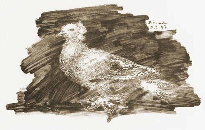 Pablo-Picasso-dove-7