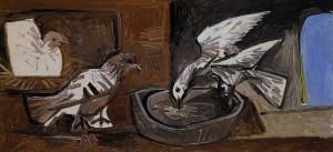 Pablo-Picasso-dove-8