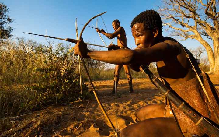 african-arrow-poison-male-contraceptive-1