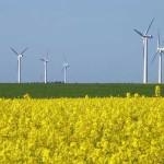 เดนมาร์กสร้างสถิติใหม่ผลิตไฟฟ้าด้วยพลังงานลมถึง 43.6% ในปี 2017