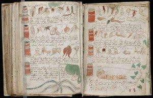 voynich-manuscript-decode-2