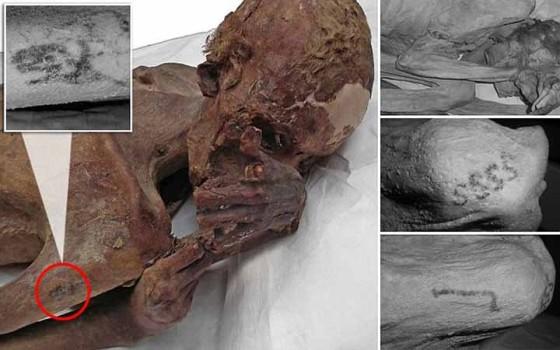 พบรอยสักรูปสัตว์เก่าแก่ที่สุดในโลกบนร่างมัมมี่อียิปต์อายุ 5,000 ปี