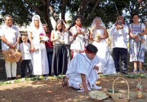 marry-a-tree-mexico-3