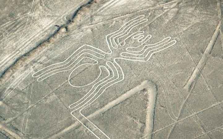 newly-discover-nazca-line-1