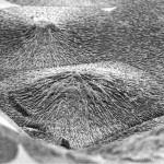 นักวิทยาศาสตร์พัฒนาวัสดุใหม่ที่สามารถใช้สร้างเคลือบฟันและกระดูกได้
