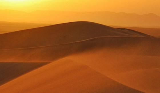 โซลาร์ฟาร์มและฟาร์มกังหันลมขนาดใหญ่ทำให้มีฝนและพืชเพิ่มมากขึ้นที่ทะเลทรายซาฮารา