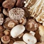 ผลวิจัยพบกิน 'เห็ด' อาจช่วยลดความเสี่ยงการเกิดภาวะถดถอยทางสมองได้อย่างมาก