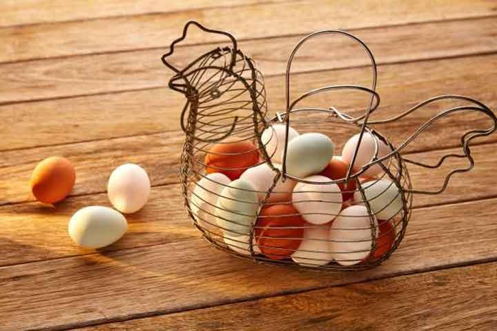 egg-vs-stoke-2