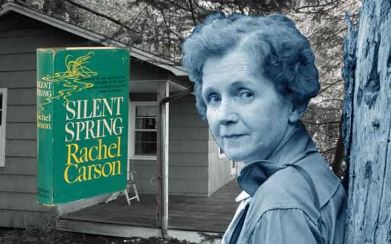 ราเชล คาร์สัน นักนิเวศวิทยาผู้ยิ่งใหญ่หัวขบวนต่อสู้เพื่อปกป้องและอนุรักษ์สิ่งแวดล้อม