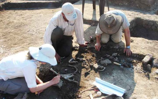 ขุดพบกระดูกของนักรบโบราณฝ่ายกบฏที่ถูกบรรยายในศิลาจารึก Rosetta Stone
